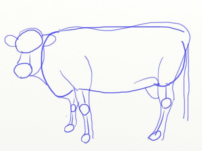 Как нарисовать корову, шаг 5