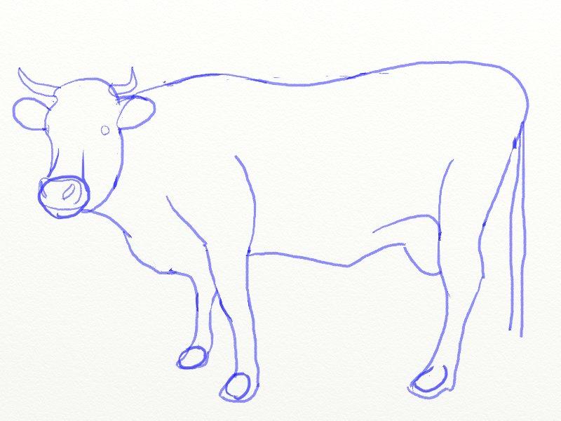 Как нарисовать корову, шаг 6