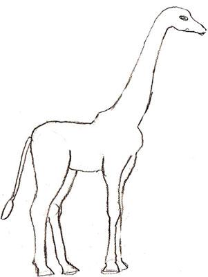 Жираф рисунки головы