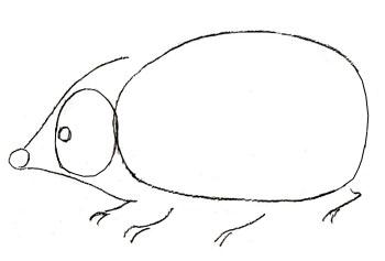 Как нарисовать ежика, шаг 2