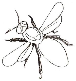 Как нарисовать пчелу, шаг 4
