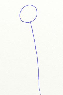 Как нарисовать ромашку, шаг 1